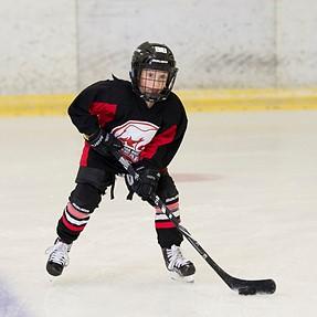 Strobed Hockey