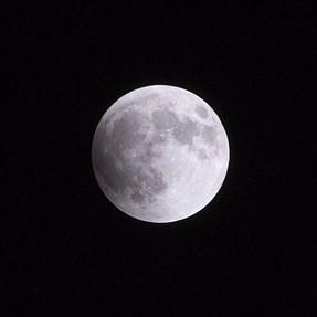 My Lunar Eclipse/Blood Moon Photos