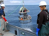 Monterey Bay Aquarium uses GoPro to create new open source research camera