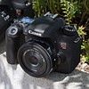 Canon EOS Rebel T6s/T6i (760D/750D) First Impressions Review