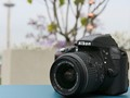 For starters: Nikon D3300 review