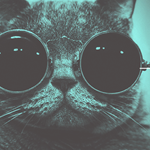 Snapcat app will turn your cat into a photographer
