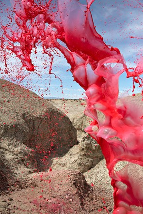 Making a splash: Photos capture colorful liquids frozen in time