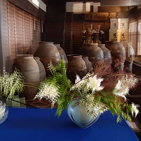 Passive 3D Ikebana