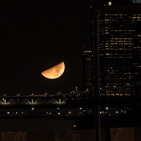 Crazy moon over NYC last night