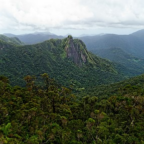 The wilds of Madagascar
