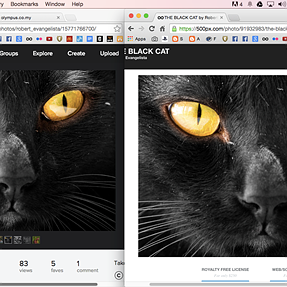 Flickr vs 500px