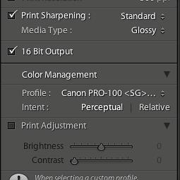 Pixma Pro-100 on a Mac using Lightroom