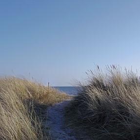 Newbie attempts landscape photos with Pentax Q7