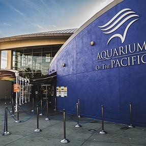 t0.95 at the aquarium and Long Beach, CA
