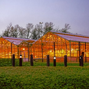 Greenhouse: Single RAW image HDR in Post (Nex-5T SEL55210)