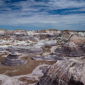 Petrified National Forest