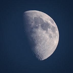Half Moon Sigma 150-600 C Nikon/D750