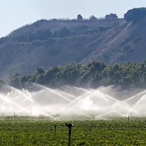 Irrigation field fountains