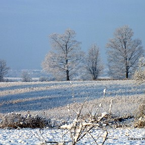 First Wintry..Morning!.