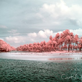 Some more Infrared