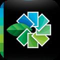 Google pulls plug on desktop version of Snapseed
