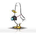 What The Duck #1404