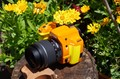 First impressions and real-world samples from the Pentax K-50