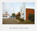 Book Review: Joel Sternfeld - First Pictures