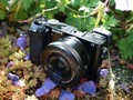 Full speed ahead: Sony a6000 Review